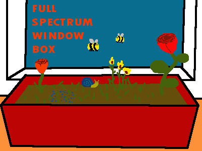 Full Spectrum Window Box Title